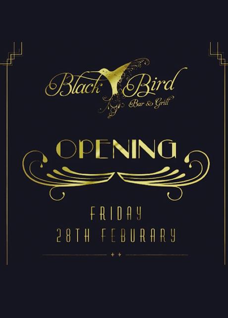 black bird bar & grill