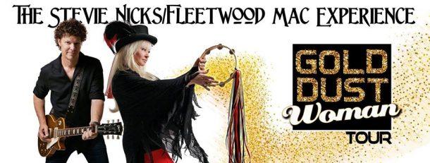 stevie nicks fleetwood mac experience
